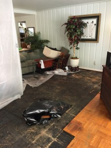 What to do after Water Damage to home or business Los Angeles
